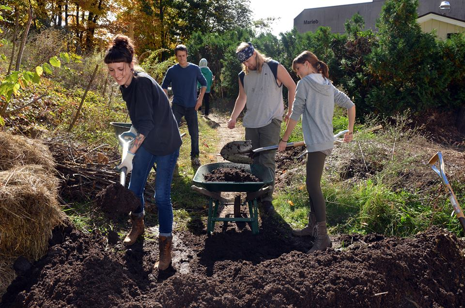 A group of students working in the HCC garden