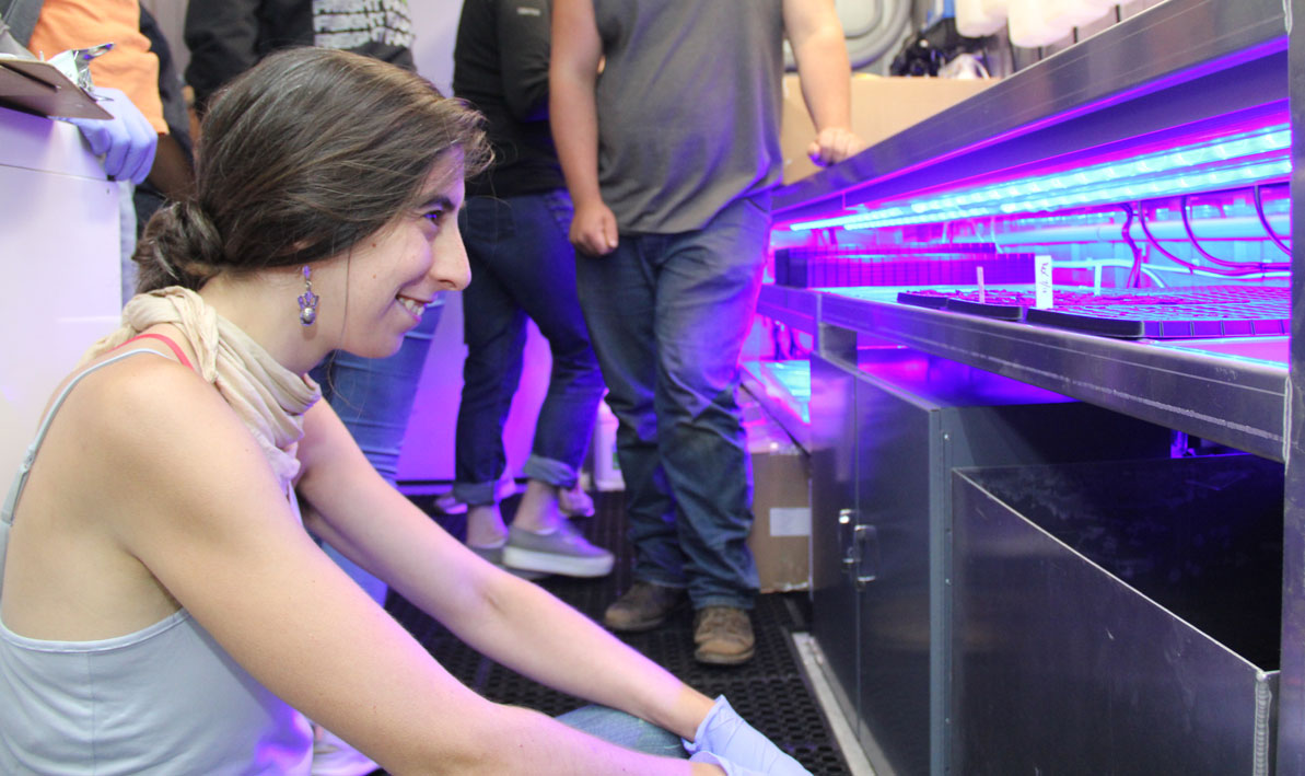 A female intern looks at an ultraviolet light inside a Freight Farm