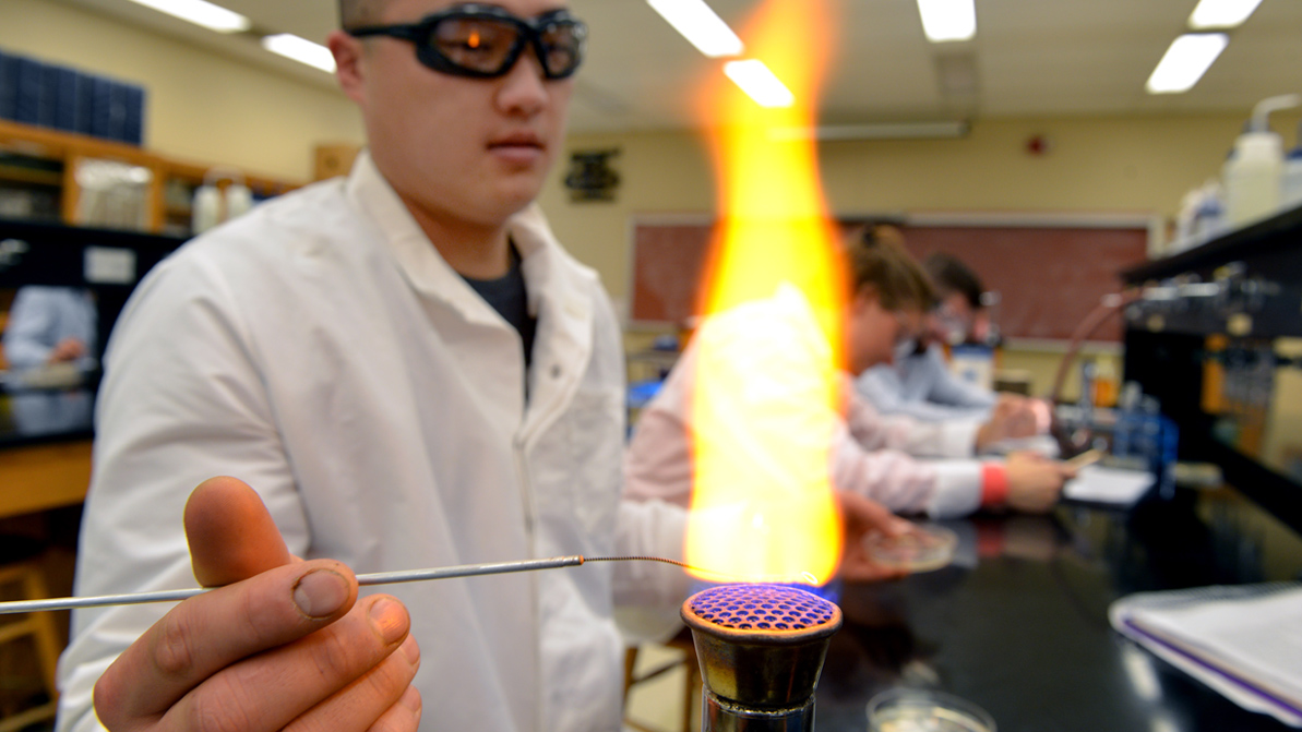 A male student performs an experiment over a bunson burner.